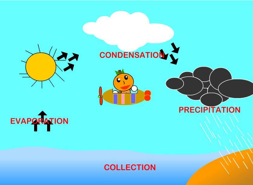 Water Cycle's Animation   Young Animators